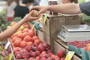 Counting Scale Makin Banyak Dibutuhkan Di Pasar Swalayan